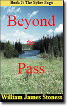 Beyond The Pass Novel Cover